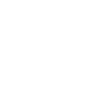 wordpress online training