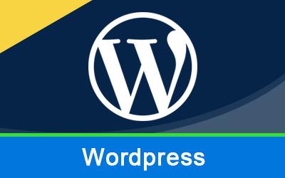 Wordress online training
